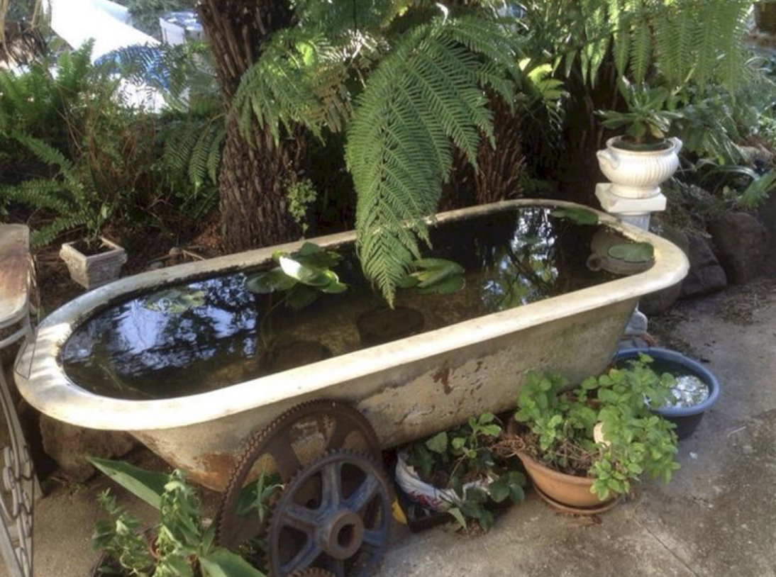5 Ways to re-use everyday items in the garden